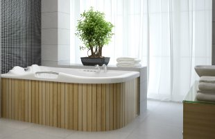 Bathtubs & Whirlpool Tubs